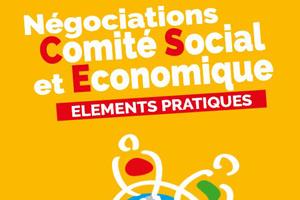 Négociations Comité Economique et Social | Guide pratique